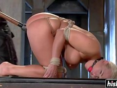 Angel Wood gets tied up and drilled