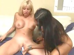 Sizzling babes Angie and Nina enjoying one hor lesbian session for pleasure