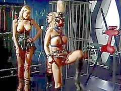 Three sexy BDSM sluts in bondage scene